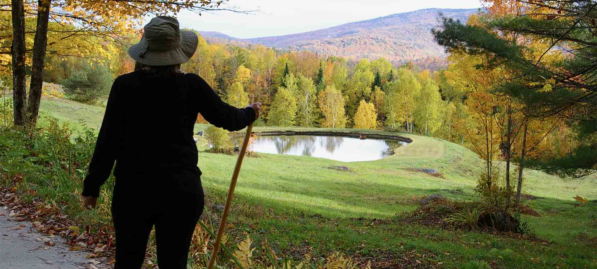 A woman with her walking stick gazing upon a small pond in a field adjascent to hiking path.